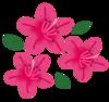 flower_tsutsuji.png